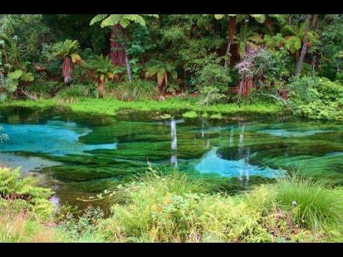 Hamurana Springs - Rainbow Mountain - Okere Falls - New Zealand - *DJI Mavic Pro* - Rotorua