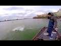 Giant River Monster Landed In Washington D C Urban Fishing