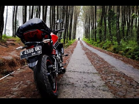 Download Top Selpi Hutan Pinus Kragilan Magelang .. Touringers Kudus