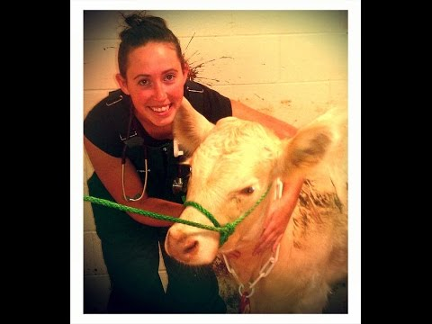 Willow MacQuaid DVM Badger Veterinary Hospital Cambridge WI
