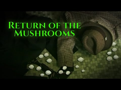 Xxx Mp4 Return Of The Mushrooms Short Film 3gp Sex