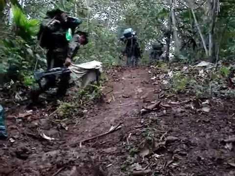 ERRADICACION COMANDOS C.O.R Erradicacion.
