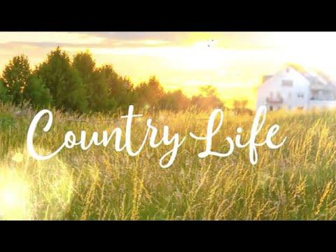 Xxx Mp4 Country Life Hallmark Movies Now 3gp Sex