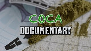 COCA (Cocaine) Documentary | Live Experience