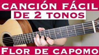 Flor de Capomo - Cancion Facil de 2 Tonos para Principiantes (Tutorial Guitarra) Los Cadetes