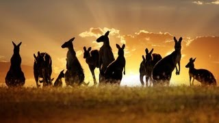 Tourism Destination: Australia