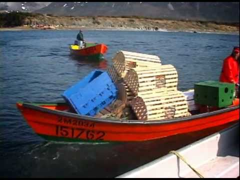 Lobster Fishery in Newfoundland