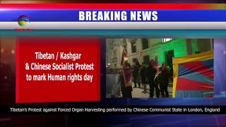 Breaking: Tibetan/Kashgar Protest in London UK over Forced Organ Harvesting & human Rights Abuses