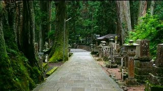 Best Temple in Japan. Koyasan Temple (My opinon that is)