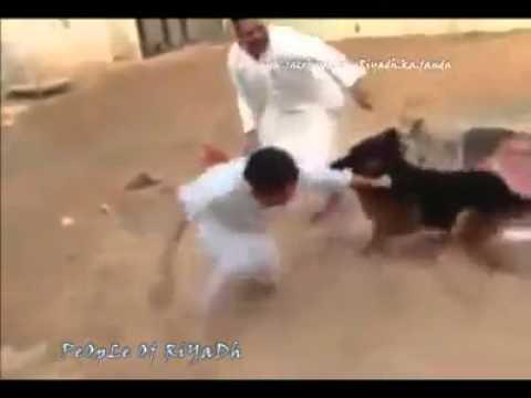 Xxx Mp4 Dog Ke Sath Mazah Acha Nahi Hot A 3gp Sex