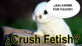 Animal Crush Fetish - Matando animales