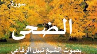 سورة الضحى الشيخ نبيل الرفاعي