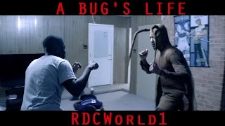 THE ROACH THAT GOT TIRED OF THE BS / A BUG