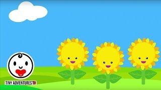 Baby Sensory - Colour Animation (Infant Visual Stimulation) #3