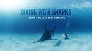 GoPro VR: Diving with Sharks - Truth Below the Surface