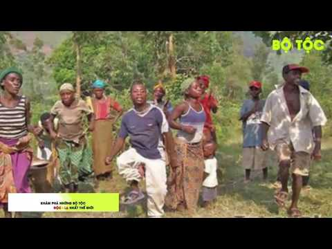 Bộ Tộc phong tục phá trinh từ khi lên 8 tuổi của người Pygmy