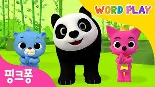 Panda | 핑크퐁과 노래하며 영어 단어를 배워요 | 워드플레이 | 영어율동동요 | 핑크퐁! 인기동요