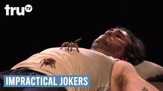 Impractical Jokers - Warehouse of Tarantula Terror