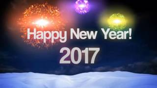 Happy New Year 2017 Video from Steve Wallace Bluffton SC