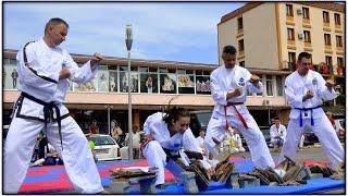 Taekwondo Academy Slovakia