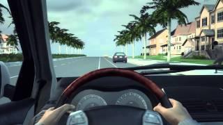 Lalaking naglakakad nang nakahubad, binaril at pinatay ng isang motorista