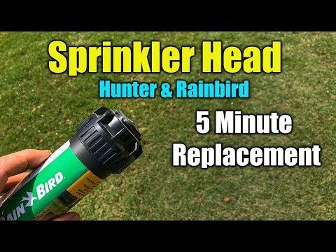 Replace Sprinkler Head RainBird and Hunter