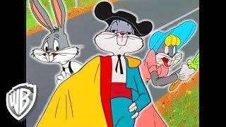 Looney Tunes en Español Latino America   ¿Era ese Bugs Bunny?   WB Kids