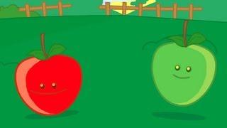 Pomme de reinette et pomme d