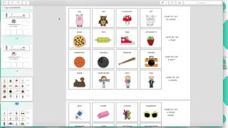 Product Preview - I Spy Non Examples Adapted Book