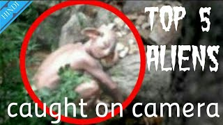 Top 5 Aliens Caught on Camera and Spotted in real Life