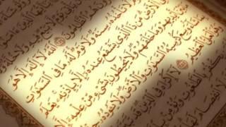 سورة نوح ماهر المعيقلي