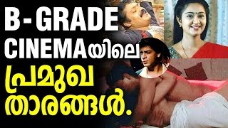 Lead Actors in Indian B GRADE CINEMA  -  Shah Rukh Khan , Suresh Gopi , Charmila