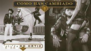 Gerardo Ortiz - Cómo Has Cambiado (Audio)