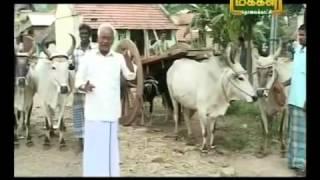 DR Kasi Pichai on Cattle.Re uploaded by umbalacherry Thangam Farms Koravankollai.
