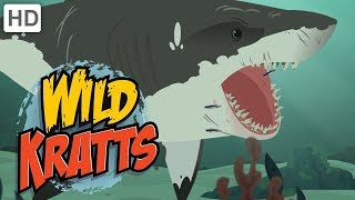 Wild Kratts - Swimming with the Sharks