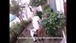 Karachi Shorab Goth Studio 6