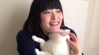 リリィ〜オッドアイの白い猫【 613 sato r】