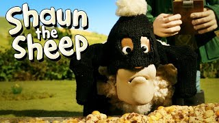 Buronan [Wanted] | Shaun the Sheep | Full Episode | Funny Cartoons For Kids