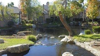 26701 Quail Creek #287, Laguna Hills California