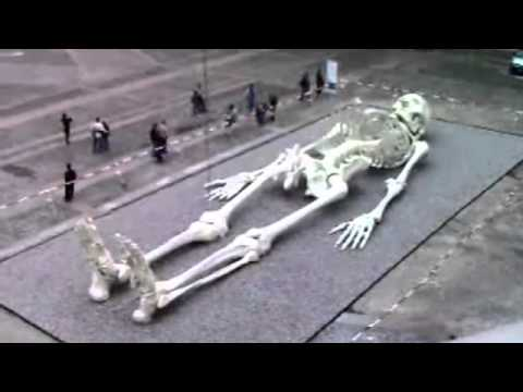 Giant Humans Of The Past Real Skeleton Of A Giant