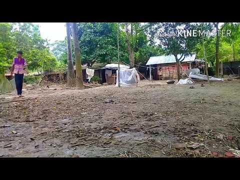Xxx Mp4 Bangla Funny Videos 2018 3gp Sex