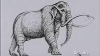Despertando al Mamut 1/2. Discovery Channel. Documental