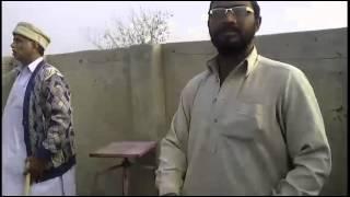 Sikander Pigeons of Dera Ismail Khan