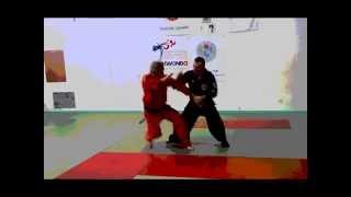 Technique Hapkido GHF