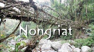 North East | E 03 | Nongriat