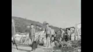 TBF - Ništa Mi Neće Ovi Dan Pokvarit