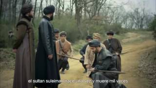 Hurrem amenaza a suleiman en Suleimán, El Gran Sultán Capitulo 282 avance subtitulado