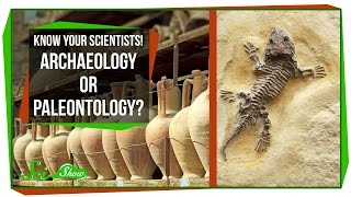 Know Your Scientists! Archaeology or Paleontology?