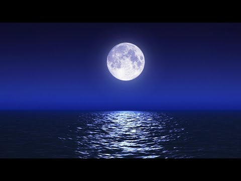Sleep Music With Ocean and Jungle Sounds – Relaxing Blue Screen Scene – Ocean and Full Moon