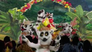 SAKAFO MARO LOKO by SAMOËLA (Be Mozik! / No String International / CRS Madagascar - 2016)